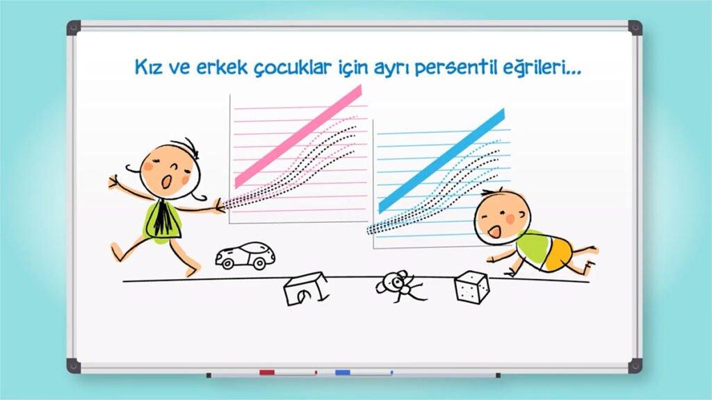 Persentil eğrisi - Prof. Dr. Feyza Darendeliler